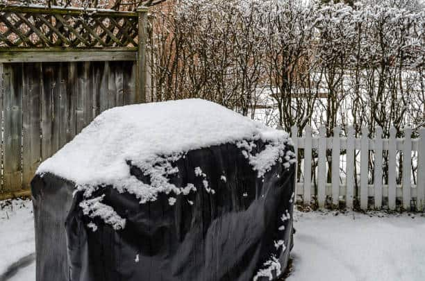Snow Covered Barbeque